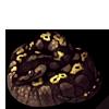 272-black-pastel-ball-python.png