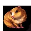 281-cream-guinea-pig.png