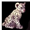 284-snow-leopard-cub.png