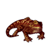 308-striped-bearded-dragon.png