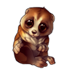 320-brown-slow-loris.png