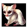 324-albino-sugar-glider.png