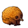 359-orange-echidna.png