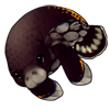 365-spotted-manatee.png