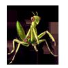 517-green-mantis.png