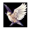 522-darwins-finch.png