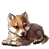 609-timber-wolf-cub.png