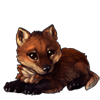 611-red-wolf-cub.png