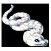 773-white-cloud-python.png