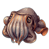 789-seabed-cuttlefish.png