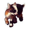 793-smores-pygmy-goat.png