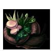 821-deep-forest-shell-garden-snail.png