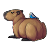 904-chattering-capybuddy.png