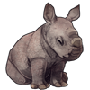 1013-gray-rhinacorn.png