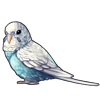 1077-sky-blue-spangle-budgie.png