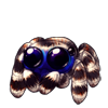 1093-striped-jumping-spider.png