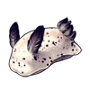 1095-speckled-sea-bunny.png