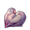 1118-pale-dusk-lovebirds.png