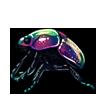 1148-dark-iridescent-scarab.png