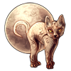 1319-harvest-moon-lykoi.png