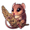1338-rosy-nose-harvest-mouse.png