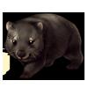 1418-coal-wombat.png