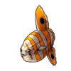 1422-clown-sunfish.png