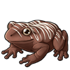 1449-classic-chocolate-frog.png