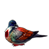 1454-bleeding-heart-dove.png