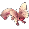 1462-common-butterlotl.png