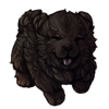 1491-onyx-chow-pup.png
