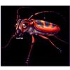 1510-elm-longhorn-beetle.png