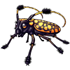 1511-tufted-longhorn-beetle.png