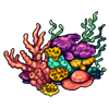 103-coral.png