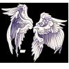 116-seraph-wings.png