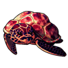 318-lava-turty.png