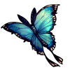 325-moon-butterfly.png
