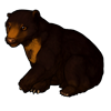 445-black-burr.png