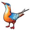 450-orange-chirp.png