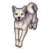 452-white-doge.png