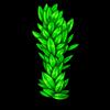 489-seaweed-vine.png