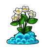 494-flying-daisies.png