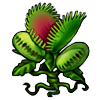 501-venus-fly-trap.png