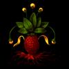 509-unusual-pineapple.png