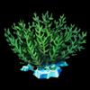 517-frozen-fern.png