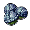 552-strange-celery-seed.png