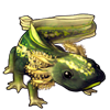 608-multilegged-axolotl.png