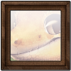 645-forum-vista-crested-gecko.png