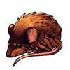 716-marbled-spiny-mouse.png