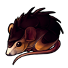 717-spiked-spiny-mouse.png